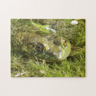 Green Frog Puzzle