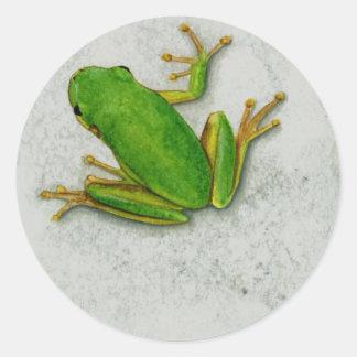 Green Frog Sticker Sheet