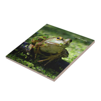 Green Frog Strikes a Pose on the Hose Small Square Tile