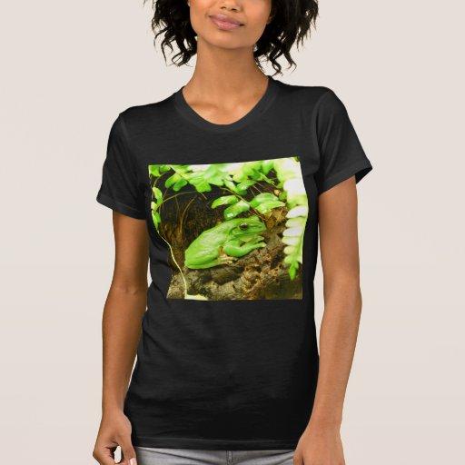 Green Frog Tees