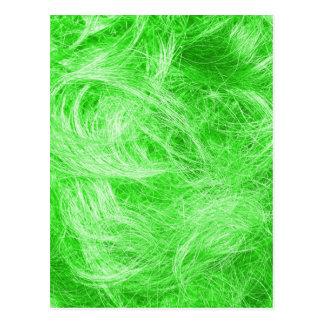 Green Fur Postcard