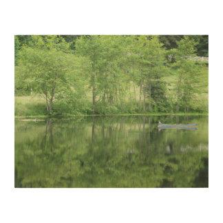 Green Garden Reflections Wood Print