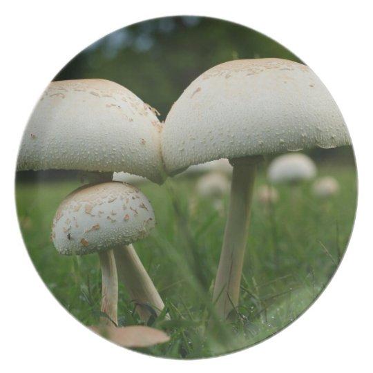 Green Gill Mushroom Plate