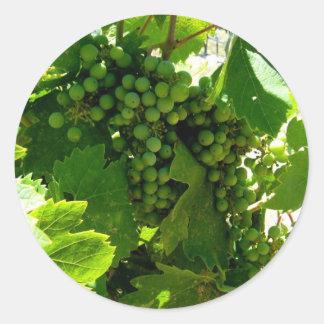 Green grape vine round sticker