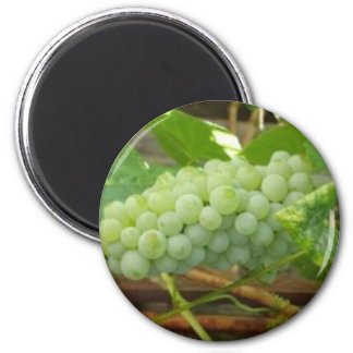 Green Grapes 6 Cm Round Magnet