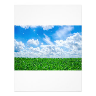 Green grass and blue sky full color flyer
