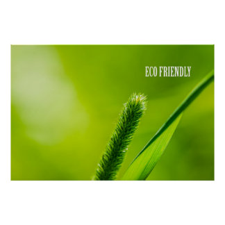 Green Grass And Sun - Eco friendly Poster