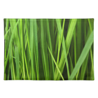 Green Grass background Placemat
