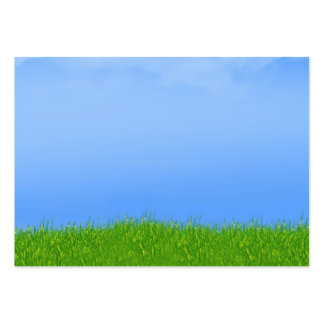 Green Grass & Blue Sky Background Pack Of Chubby Business Cards