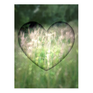 Green Grass Hearts Post Cards