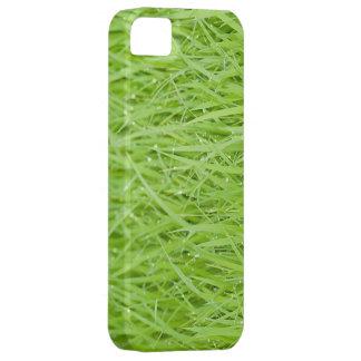 Green grass iPhone 5 case