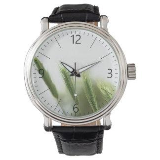 Green grass watch