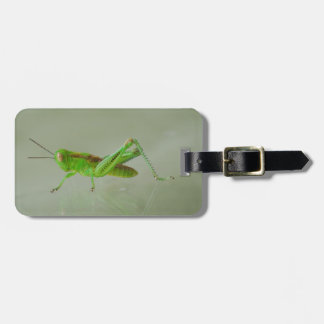 Green Grasshopper Luggage Tag