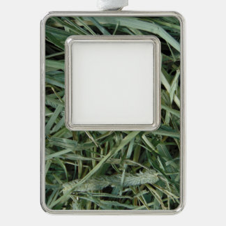 Green Hay 0147 Photo Silver Plated Framed Ornament