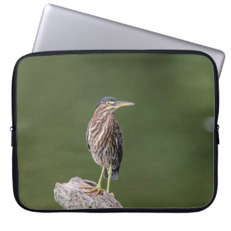 Green Heron on a log Laptop Sleeve