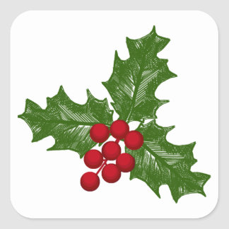 Green Holly Leaves With Red Berries Square Sticker