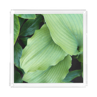 Green Hosta Leaves Floral Acrylic Tray