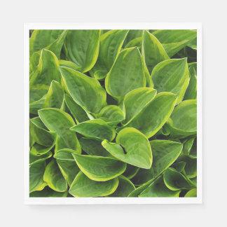 Green hosta plant leaves disposable napkins