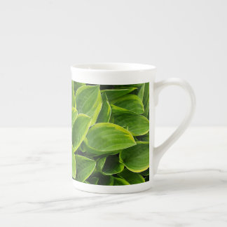 Green hosta plant leaves tea cup