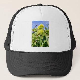 Green husks and leaves of sweet chestnut tree trucker hat