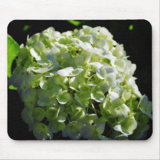 Green Hydrangeas Flowers Mousepads