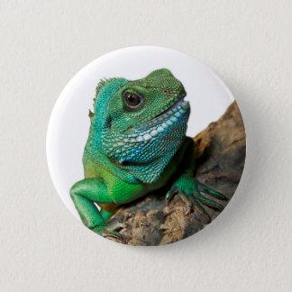 Green iguana 6 cm round badge