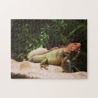 Green Iguana Costa Rica Puzzle