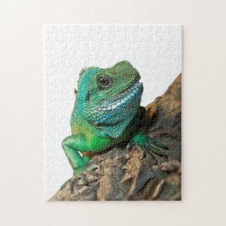Green iguana jigsaw puzzle