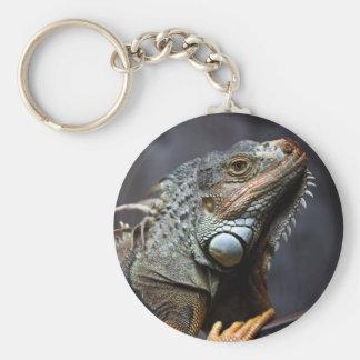 Green iguana portrait basic round button key ring