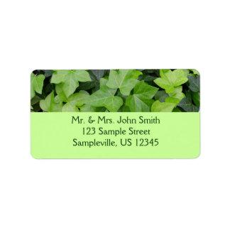 Green Ivy Botanical Print Address Label
