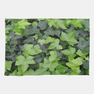 Green Ivy Botanical Print Tea Towel