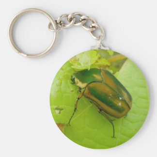 Green June Beetle Keychain