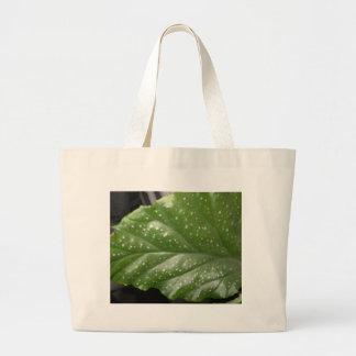 Greenleaf Canvas Bags