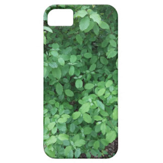 Green leaf design iPhone 5 cover