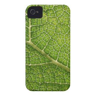 Green Leaf. Digital Art. iPhone 4 Covers