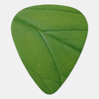Green Leaf Guitar Pick