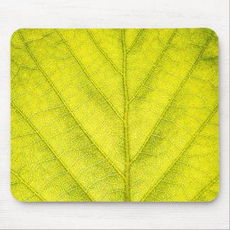 Green Leaf Macro Mouse Pad