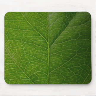 Green Leaf Mouse Pad