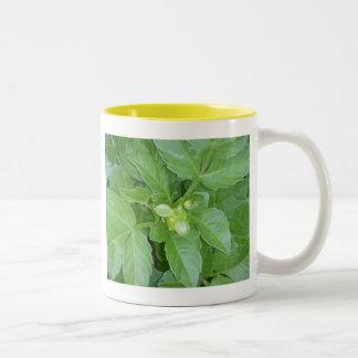 Green Leaf Mug