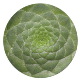 green leaf pattern spiral design plate