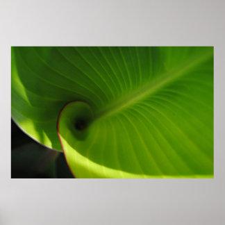 Green Leaf Swirl Print