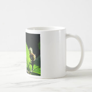 Green leaf with cool shadow mugs