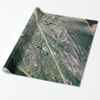 Green Leaf With Water Drops, Wet Botanics Wrapping Paper