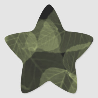 Green Leaf X-Ray.png Star Sticker