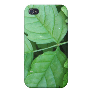 Green Leafs Details iPhone 4 Cases