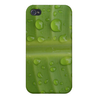 Green Leafs with Droplets iPhone 4/4S Covers