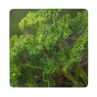 Green Leafy Herbal Parsley for Kitchen or Dining Puzzle Coaster