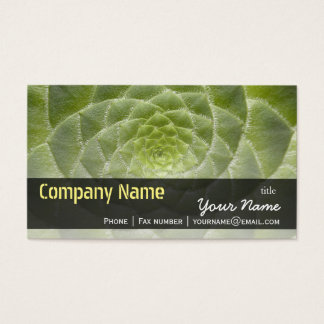 Green Leaves Aeonium Tabuliforme Business Template