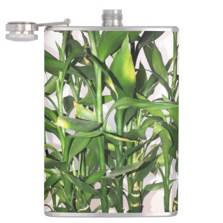 Green leaves and bamboo shoots house plant hip flask