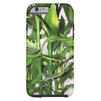 Green leaves and bamboo shoots house plant tough iPhone 6 case